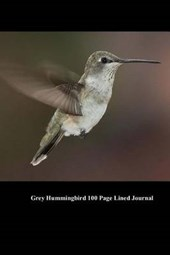 Grey Hummingbird 100 Page Lined Journal
