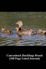 Canvasback Ducklings Brood (100 Page Lined Journal) | Unique Journal |
