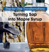 Turning Sap into Maple Syrup | Amy Hayes |
