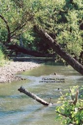 Clinch River, Virginia (100 Page Lined Journal)