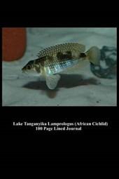 Lake Tanganyika Lamprologus (African Cichlid) 100 Page Lined Journal