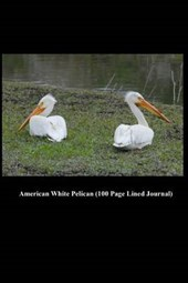 American White Pelican (100 Page Lined Journal)