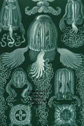 Ernst Haeckel Cubomedusae Jellyfish 100 Page Lined Journal