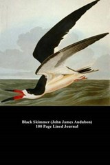 Black Skimmer (John James Audubon) 100 Page Lined Journal | Unique Journal |