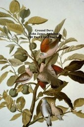 Ground Dove (John James Audubon) 100 Page Lined Journal