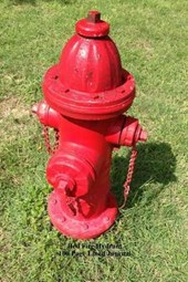 Red Fire Hydrant 100 Page Lined Journal