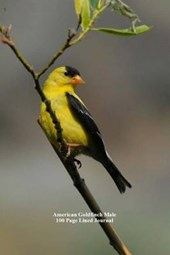 American Goldfinch Male 100 Page Lined Journal