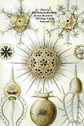 Plate 1 Phaeodaria Seashells (Ernst Haeckel) 200 Page Lined Journal
