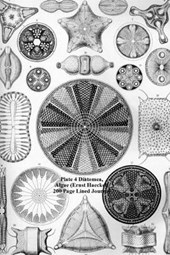 Plate 4 Diatomea, Algae (Ernst Haeckel) 200 Page Lined Journal