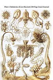Plate 6 Tubulariae (Ernst Haeckel) 200 Page Lined Journal