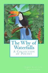 The Why of Waterfalls