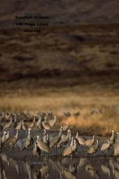 Sandhill Cranes 100 Page Lined Journal