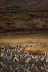 Sandhill Cranes 100 Page Lined Journal | Unique Journal |