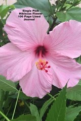 Single Pink Hibiscus Flower 100 Page Lined Journal | Jmm Shepperd |