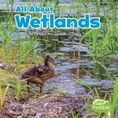 All About Wetlands | Christina Mia Gardeski |