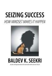Seizing Success