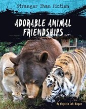 Adorable Animal Friendships