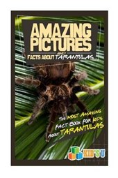 Amazing Pictures and Facts About Tarantulas