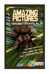 Amazing Pictures and Facts About Tarantulas | Mina Kelly |