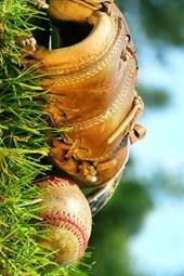 A Baseball and Glove in the Grass