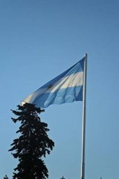The Flag of Argentina Blowing in the Wind