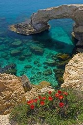 Ayia Napa Rock Arch in Cyprus Journal
