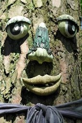 A Face on the Tree in Germany