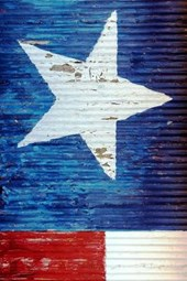 Steel Barn with the Texas State Flag