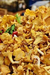 Delicious Real Chanterelles Mushrooms, for the Love of Food