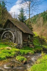 An Abandoned Mill in the Forest | Unique Journal |
