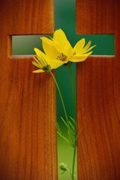 A Beautiful Cross and Yellow Flower
