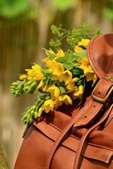 Backpack and Flowers in the Park | Unique Journal |