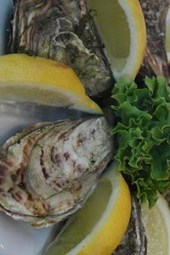 Fresh Oysters and Lemons, for the Love of Food