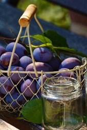 Plums in a Steel Basket, for the Love of Food