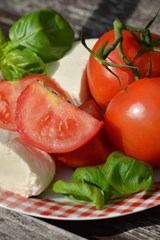 Tomato's and Mozzarella Cheese, for the Love of Food | Unique Journal |