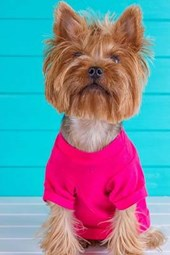 """Yorkshire Terrier Says, """"Get Me Out of This Pink Shirt!"""" Journal"""
