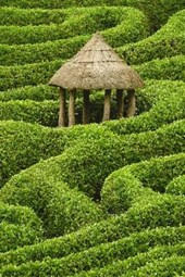 Hut in a Hedge Maze Journal