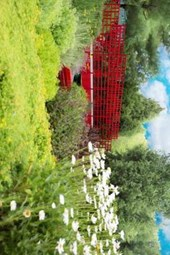 A Beautiful Red Bridge in the Garden