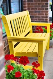 A Beautiful Yellow Bench and Red Flowers