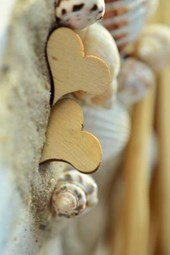Wooden Hearts and Seashells in the Sand
