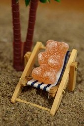 Tiny Bear in a Deck Chair