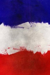 A Painted French National Flag