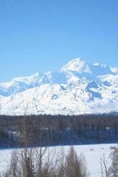 Website Password Organizer MT McKinley Tallest American Mountain