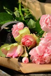A Newly Delivered Bouquet of Pink Roses