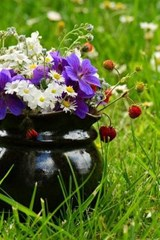 A Pitcher Turned Planter in the Grass, for the Love of Flowers | Unique Journal |
