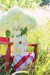 Hydrangeas in a Vase on a Red Chair in the Garden