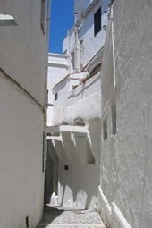 Website Password Organizer a Narrow Alley in Santorini, Greece