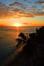 Website Password Organizer Waikiki Beach Sunset
