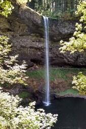 Website Password Organizer Silver Creek Falls in Oregon