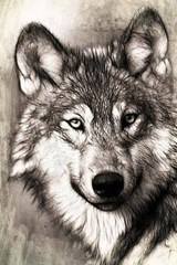 A Drawing of a Wolf, for the Love of Animals | Unique Journal |